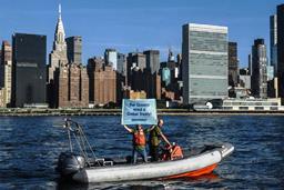 greenpeace new york.jpg